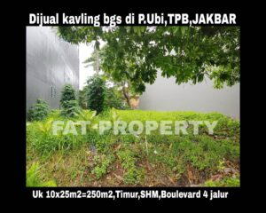 Dijual kavling di perumahan mewah di Pulau Ubi Raya,Taman Permata Buana,Jakarta Barat.