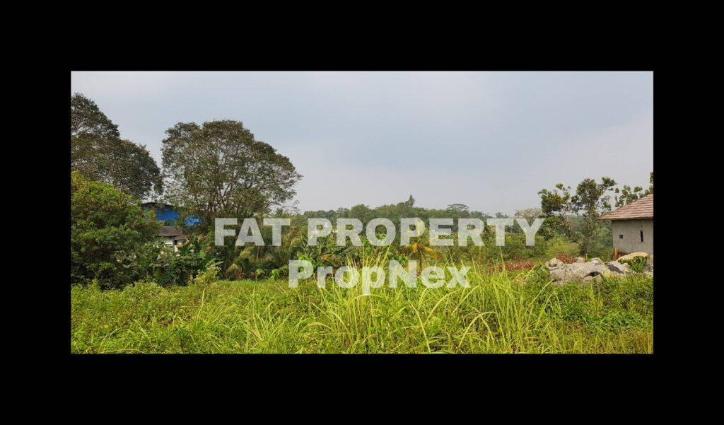 Dijual lahan industry pinggir jalan di Jl Cikande Rangkasbitung km 5,5 arah ke Serang.